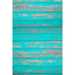 Savage Rustic Teal Wood Printed Vinyl Backdrop (5x7')