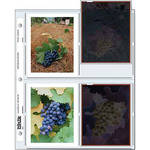 "Print File Archival Storage Pages for 4x5"" Polaroid Prints / Negatives (100-Pack)"