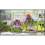 "NEC C501 50""-Class Full HD Commercial LED Display"