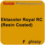 "Kodak ROYAL Digital Color Paper (Smooth Glossy, 8"" x 255.9' Roll)"