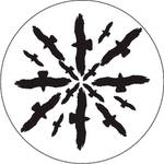 Rosco Glass Gobo/ Circling Birds Silhouette 2 (A Size)