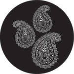 Rosco Paisley 4 B/W Breakup Glass Gobo (B Size)