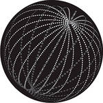 Rosco Swarm B/W Breakup Glass Gobo (B Size)