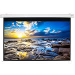 "Alltec Electric Projector Screen 100"" Diag/Hdtv Format (49x87"") Matte White Fabric (White Case)"
