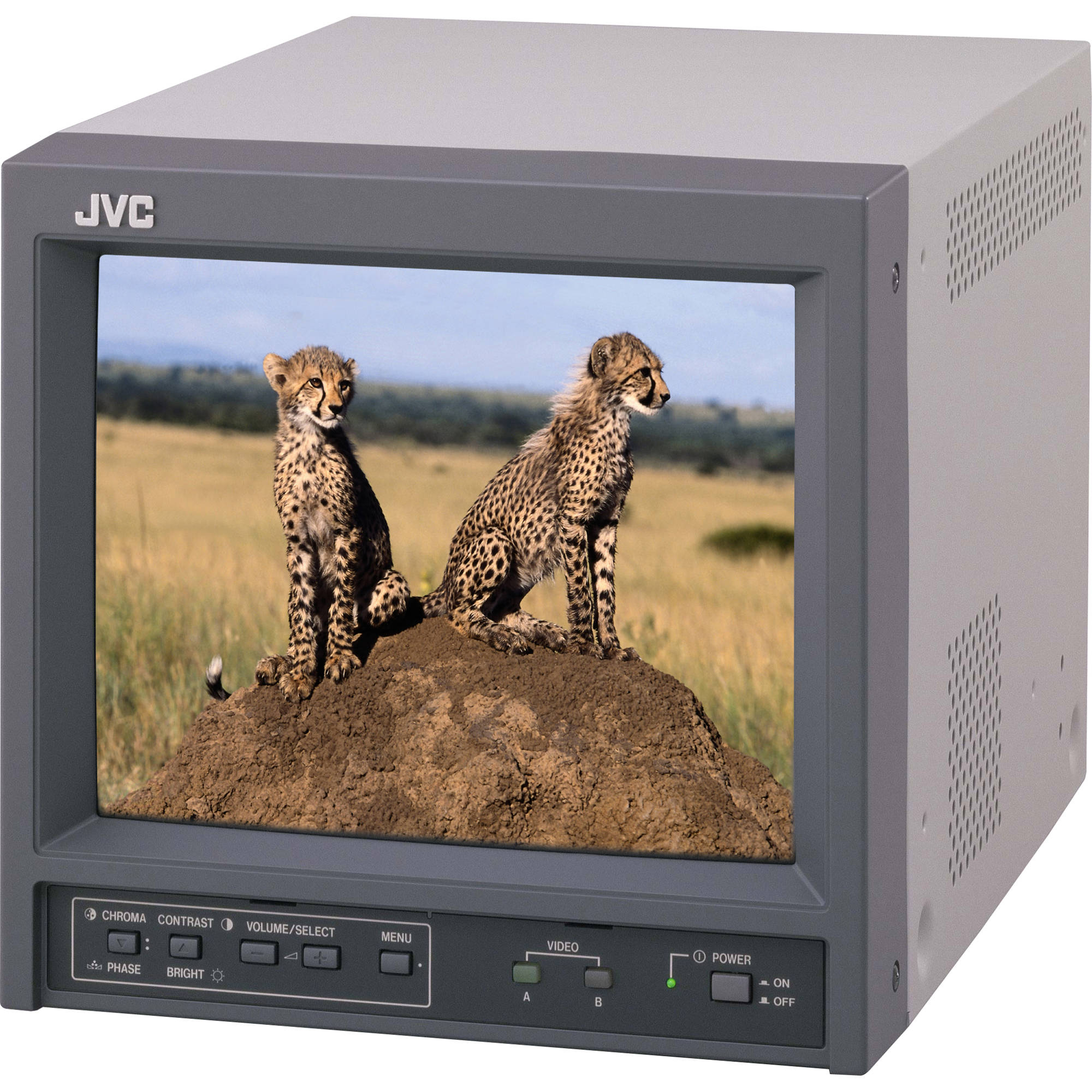 """JVC TM-A101GU 10"""" Color Production Monitor with 300 Lines"""