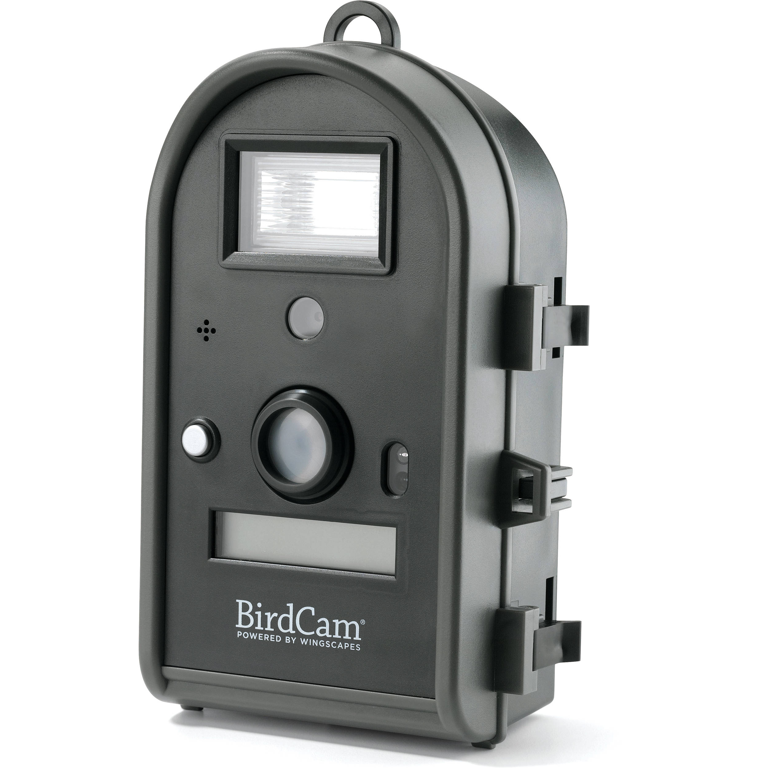 wingscapes birdcam 2 0 motion activated digital wildlife camera