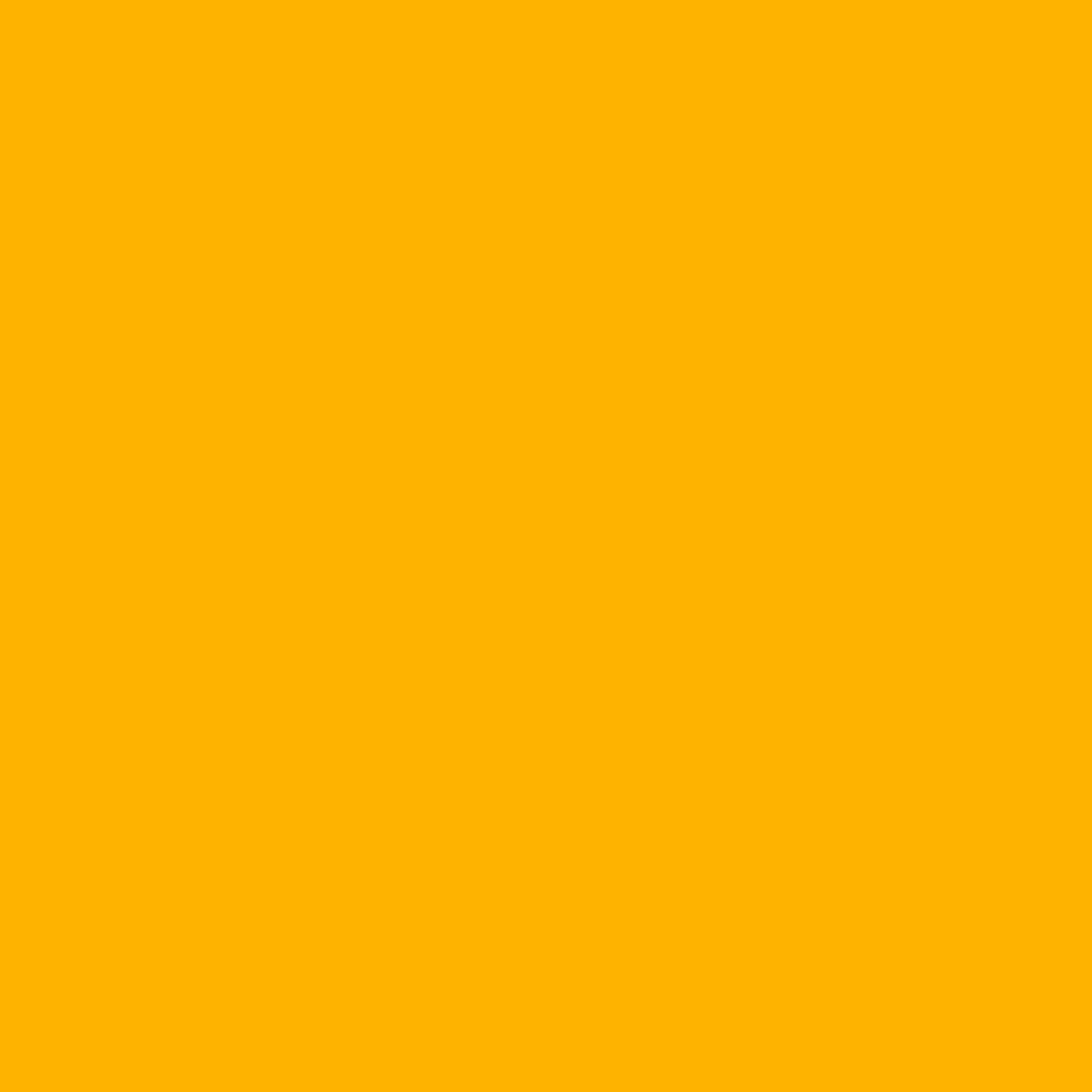 Rosco E-Colour+ #770 Burnt Yellow 102307704825 B&H Photo Video