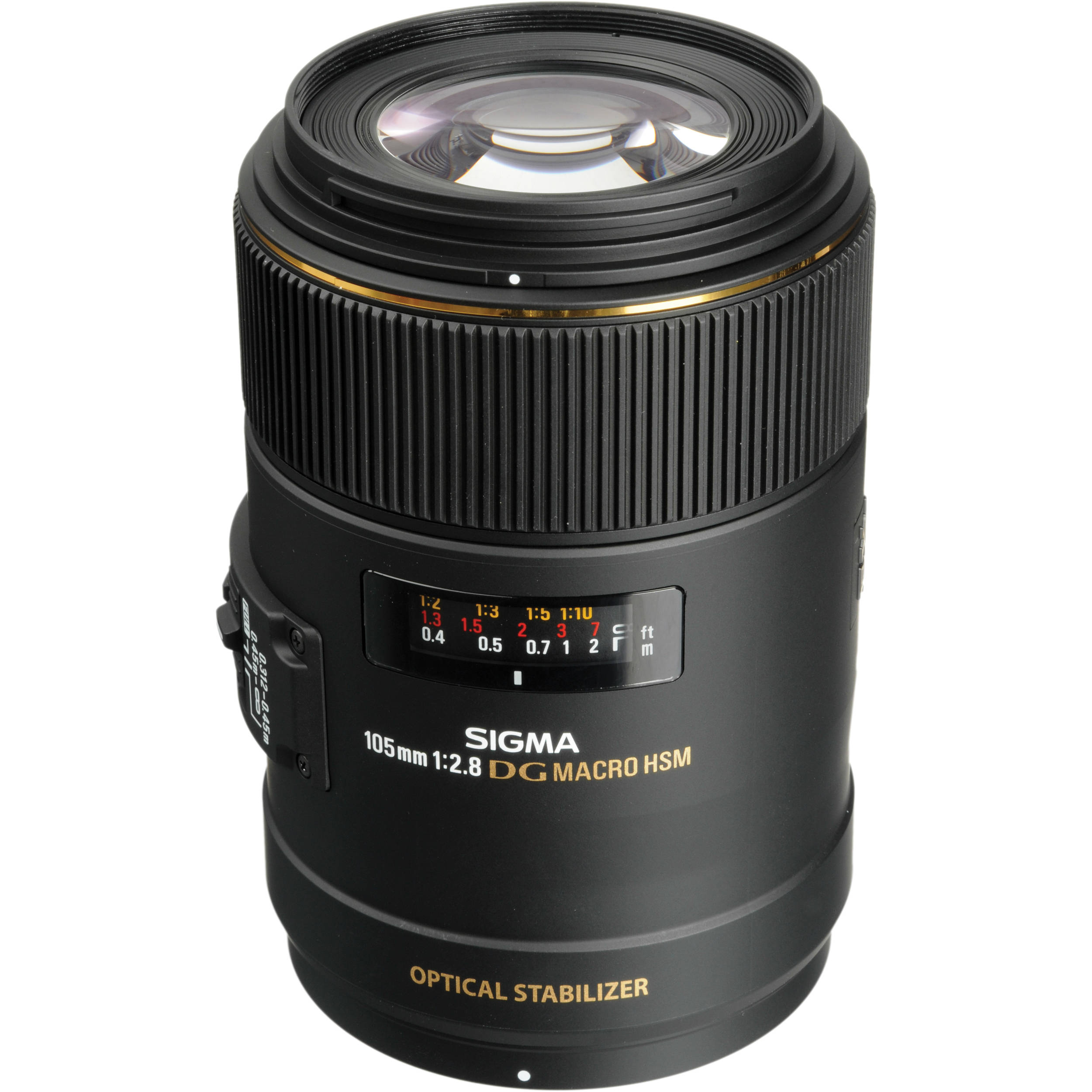 Best Lens For Dog Photography