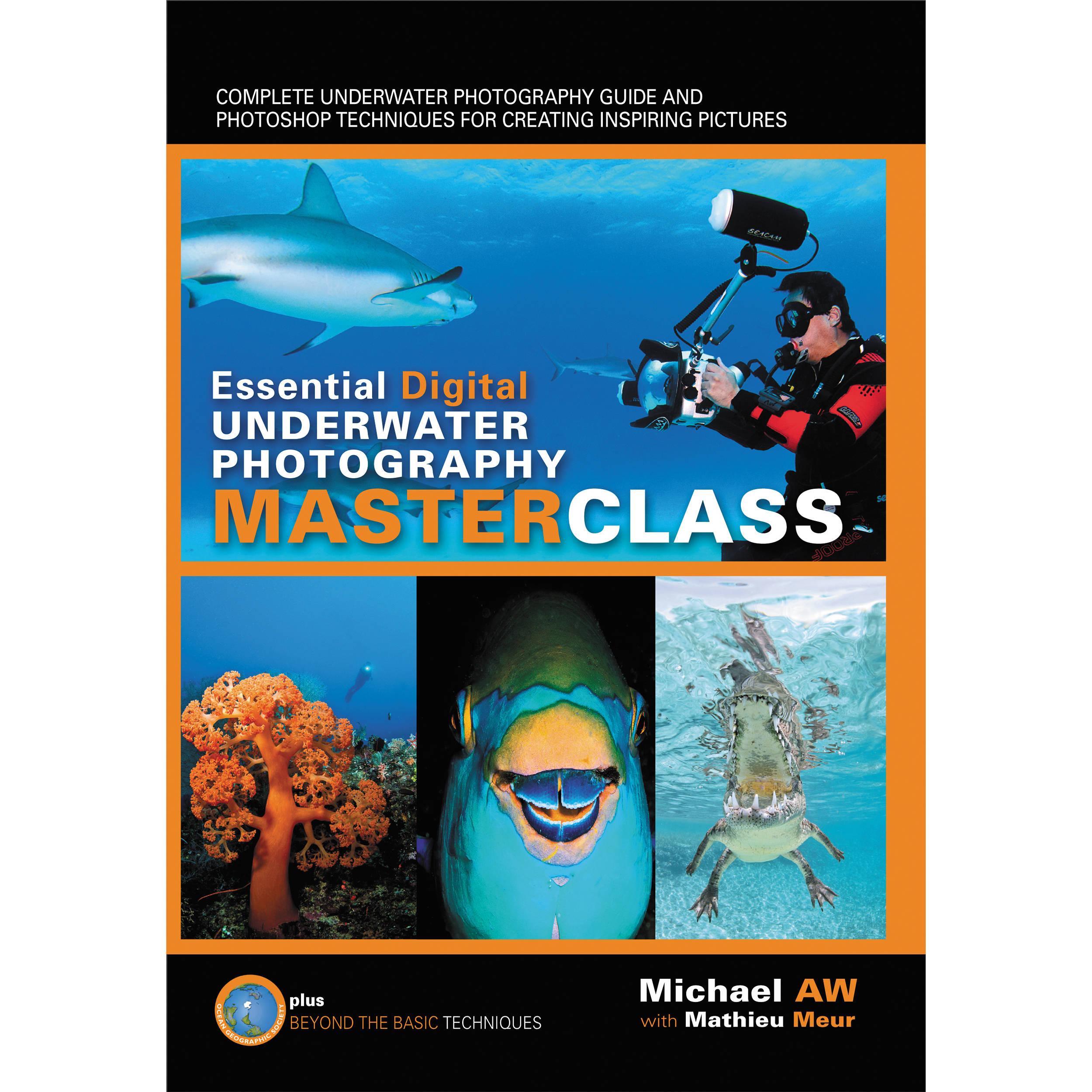 Essential Guide to Digital UW Photography :: Wetpixel.com