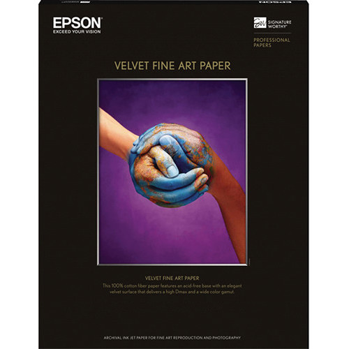 epson software language change