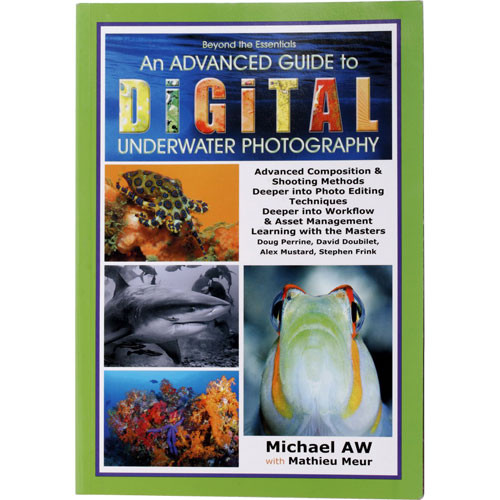 essential guide to underwater digital photography