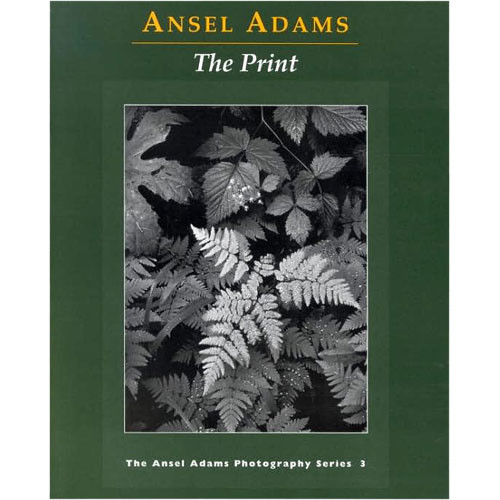 critical appraisal of ansel adams If purported ansel adams photos earn big money, their discoverer  if norsigian  makes a mint -- and an appraisal he released tuesday put the.
