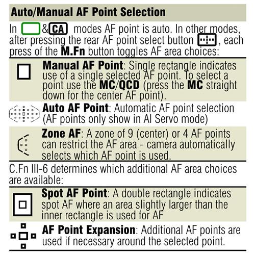 canon 7d cheat sheet pdf