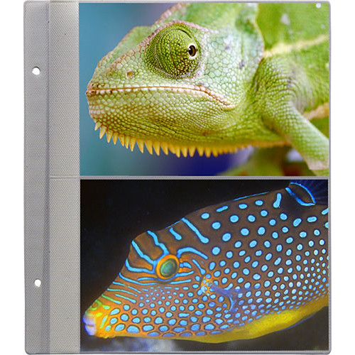 Pioneer Photo Albums R57 Refill Pages For The Ps 5781 Photo R57