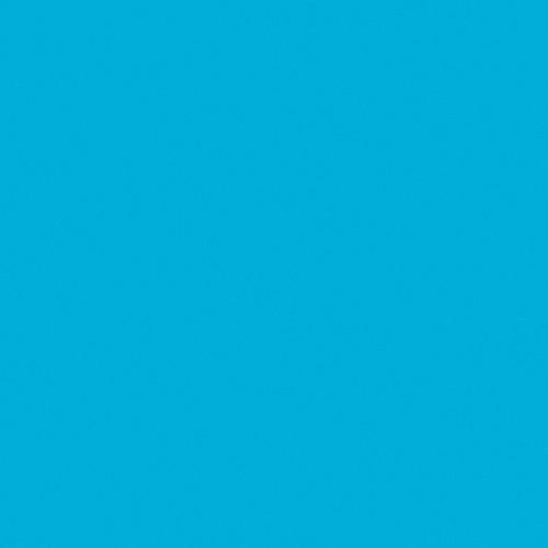 Rosco Fluorescent Lighting Sleeve Tube Guard 110084013605