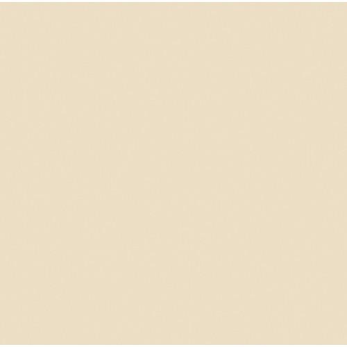 Rosco Fluorescent Lighting Sleeve Tube Guard 110084014805 3409