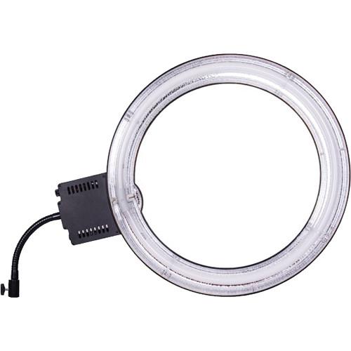Fluorescent Light Ring