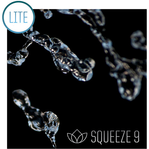Sorenson squeeze for mac download.