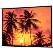 Draper 104231QL Access/Series E Motorized Front Projection Screen (58x104)